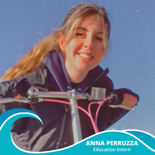 Anna Perruzza Announcement Image 1_1
