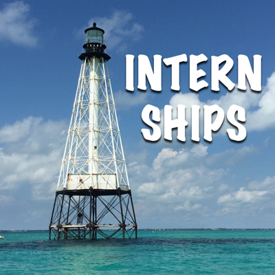 Internship title graphic 2. 400x400